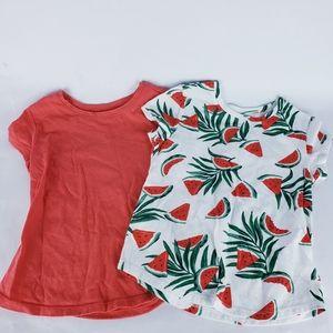 4t shirt lot watermelon